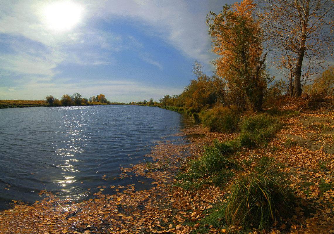 Шелестит осень жёлтою листвой - Сергей Жуков