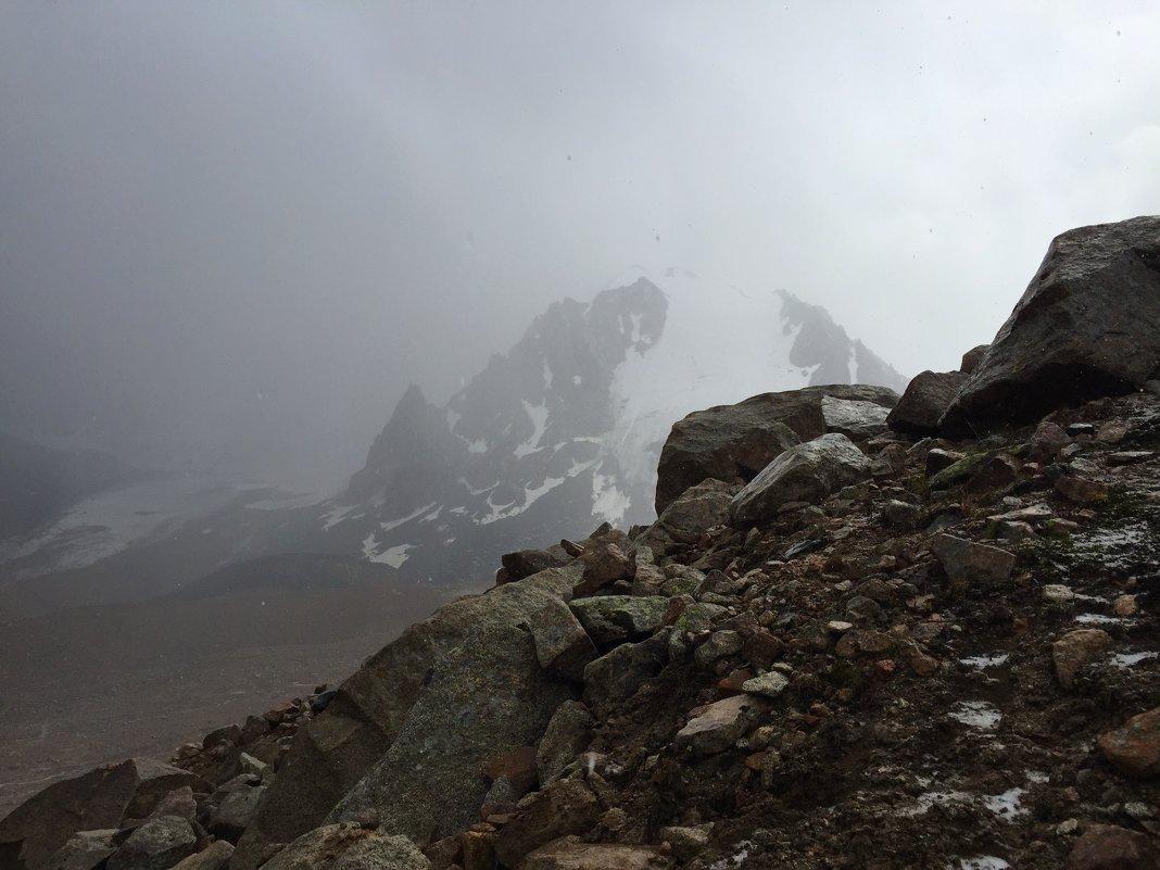 Освежающая прохлада  насыщенного тумана. - Anna Gornostayeva