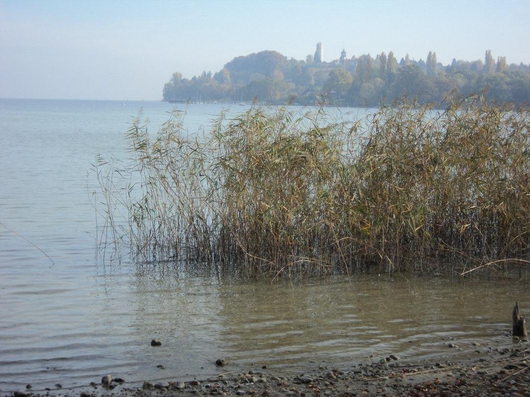 Озеро в печали по ушедшему лету - kuta75 оля оля