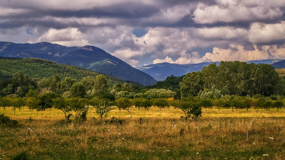 Сад, горы и облака ... - Андрей Дворников