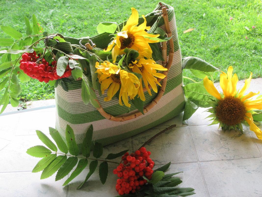Осень в моем саду - Mariya laimite