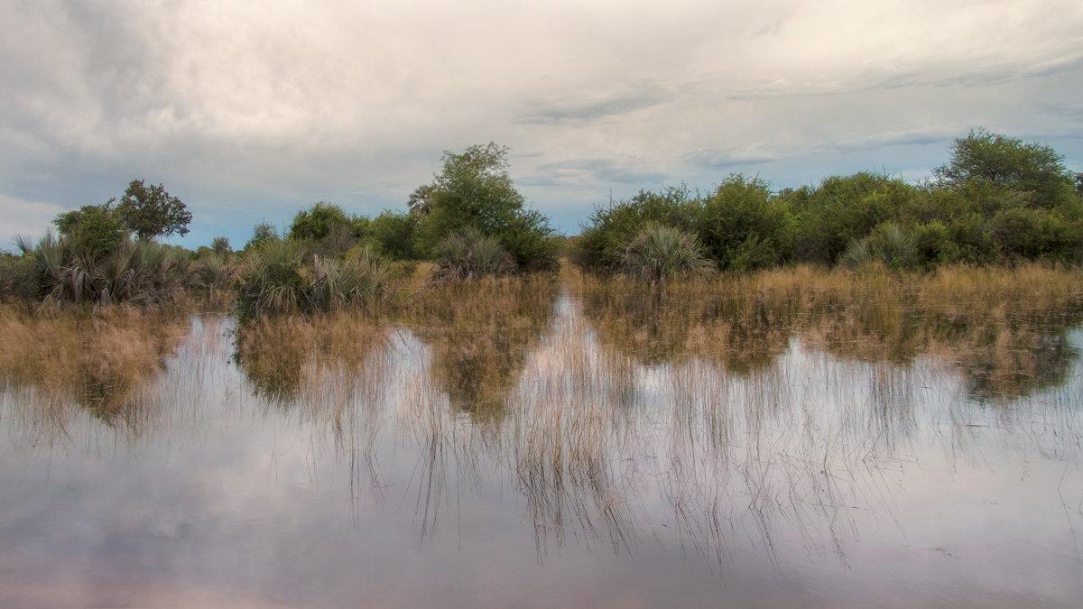 разлив - svabboy photo