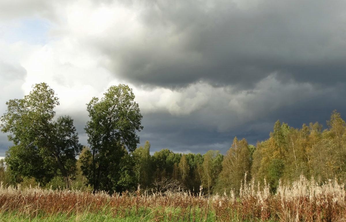 Осень уже не за лесами - Владимир Гилясев