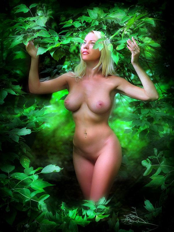 В зелени лета.... - Андрей Войцехов
