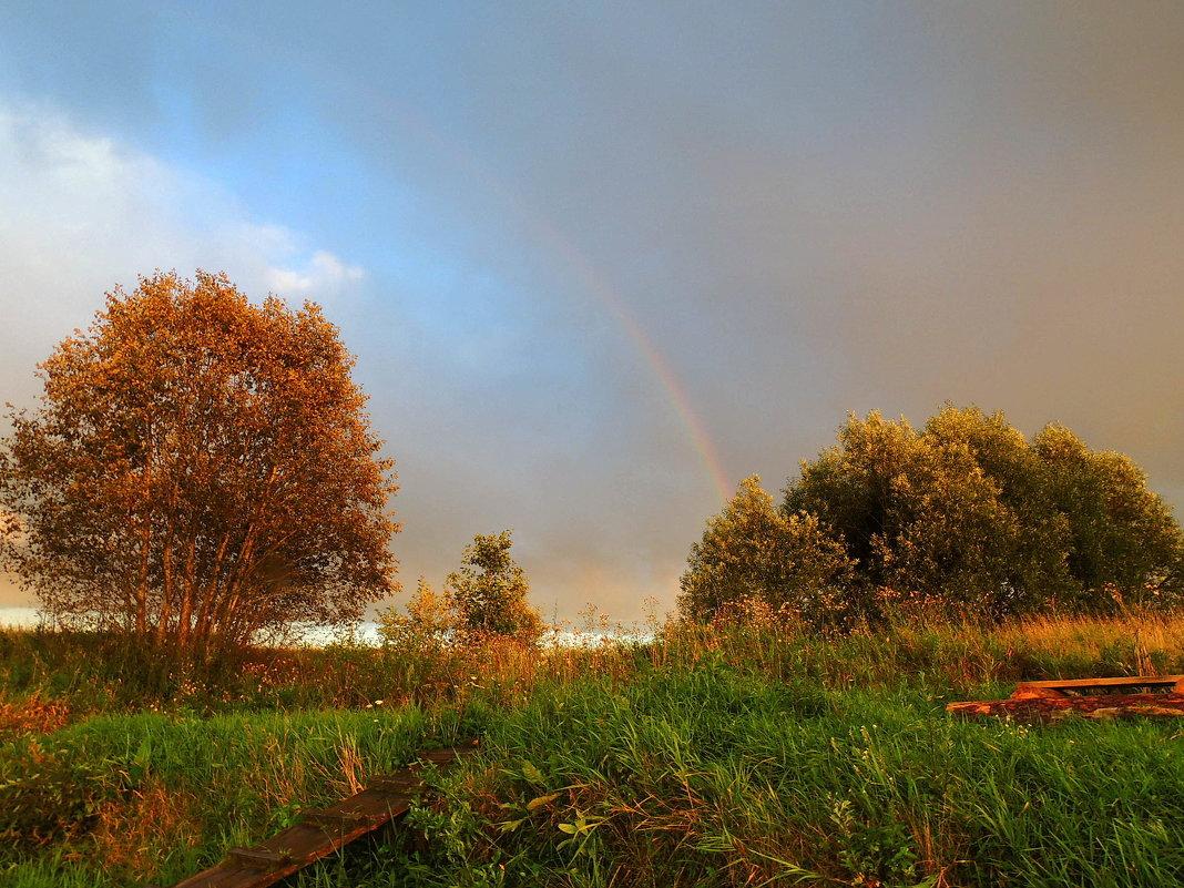Осенние радуги - Павлова Татьяна Павлова