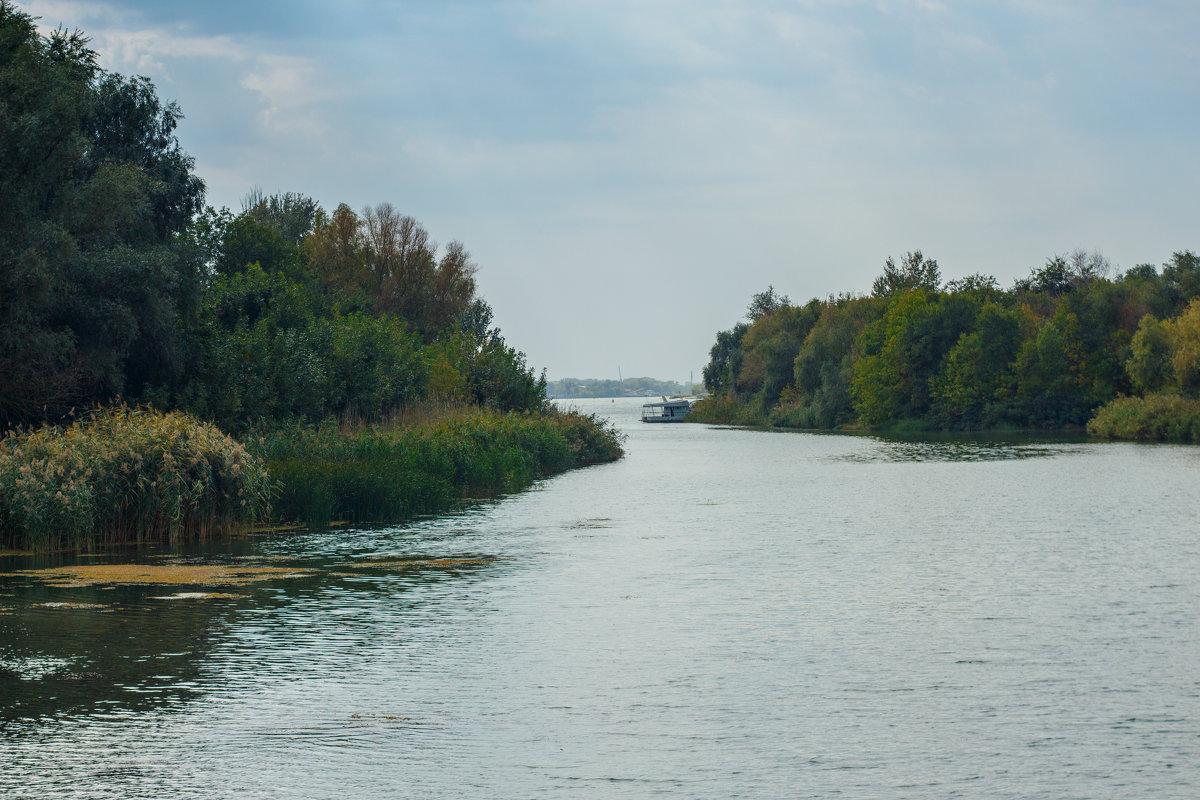 Река - Дмитрий Максимовский