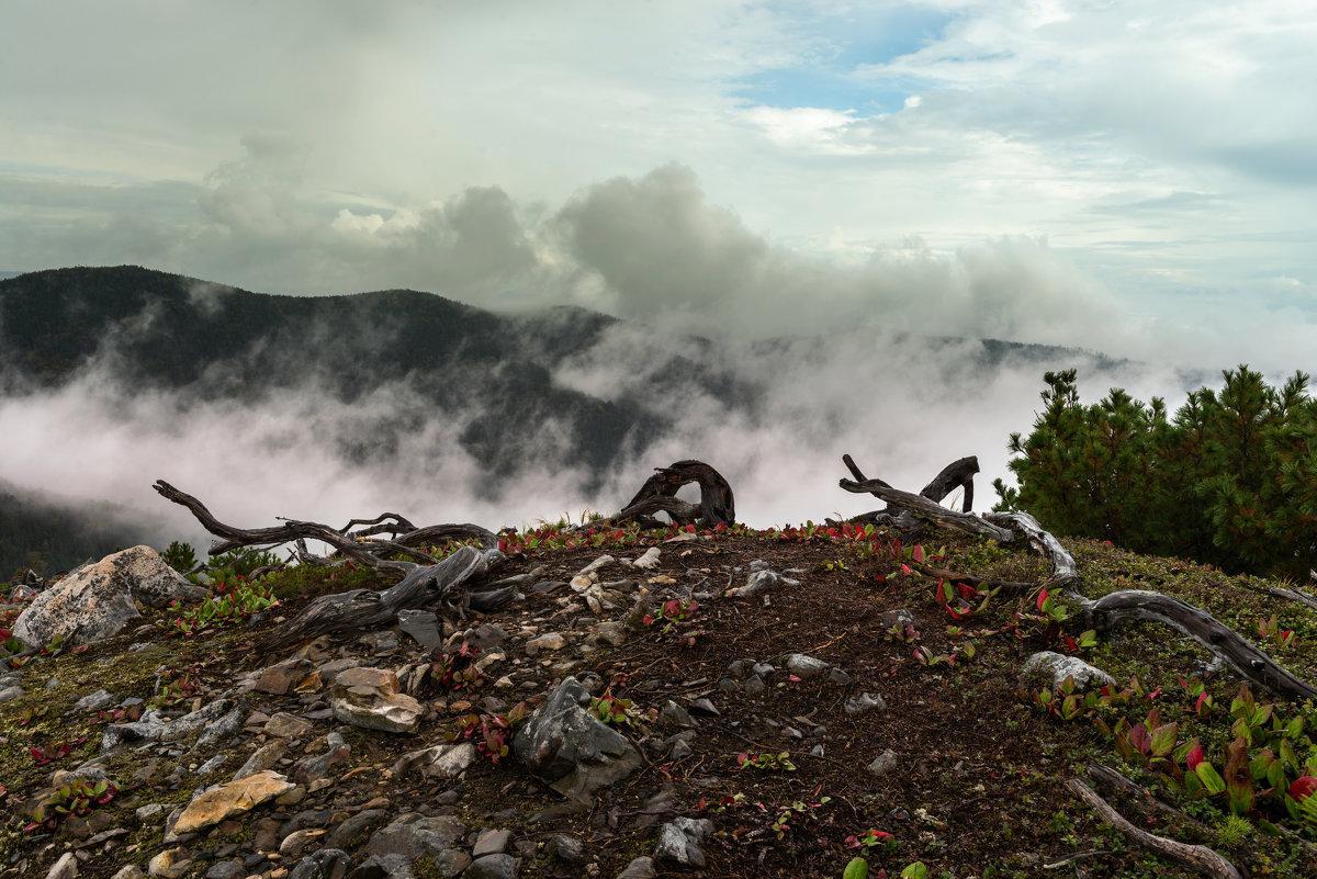 Туман на горе Адзи. - Поток