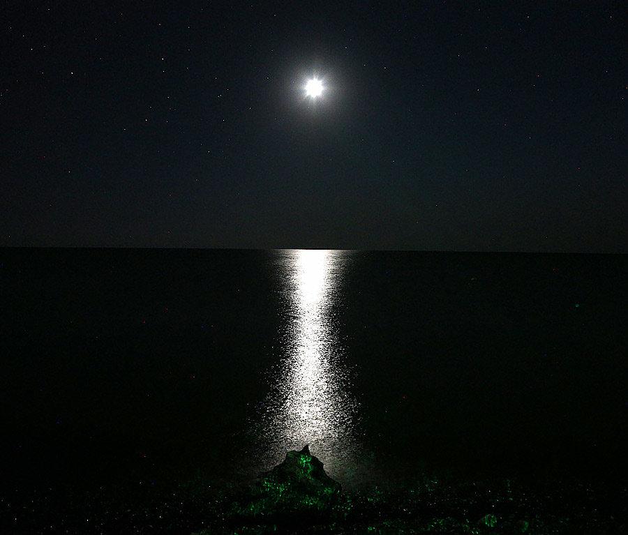 Лунная ночь - Alexander Varykhanov