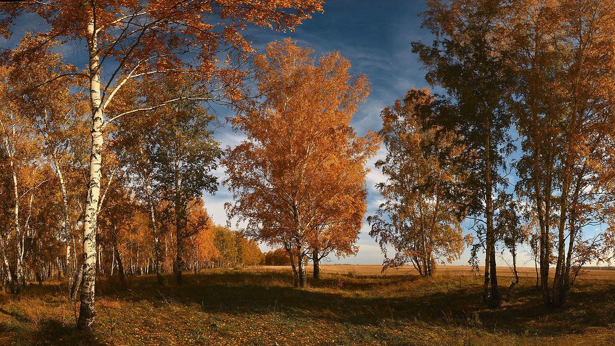 Я с осенью в ладу 2 - Сергей Жуков