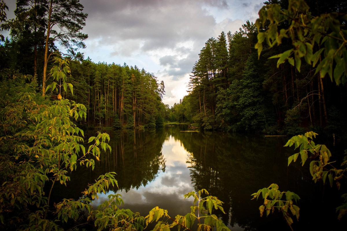 Лесное озеро - Сергей Токмаков