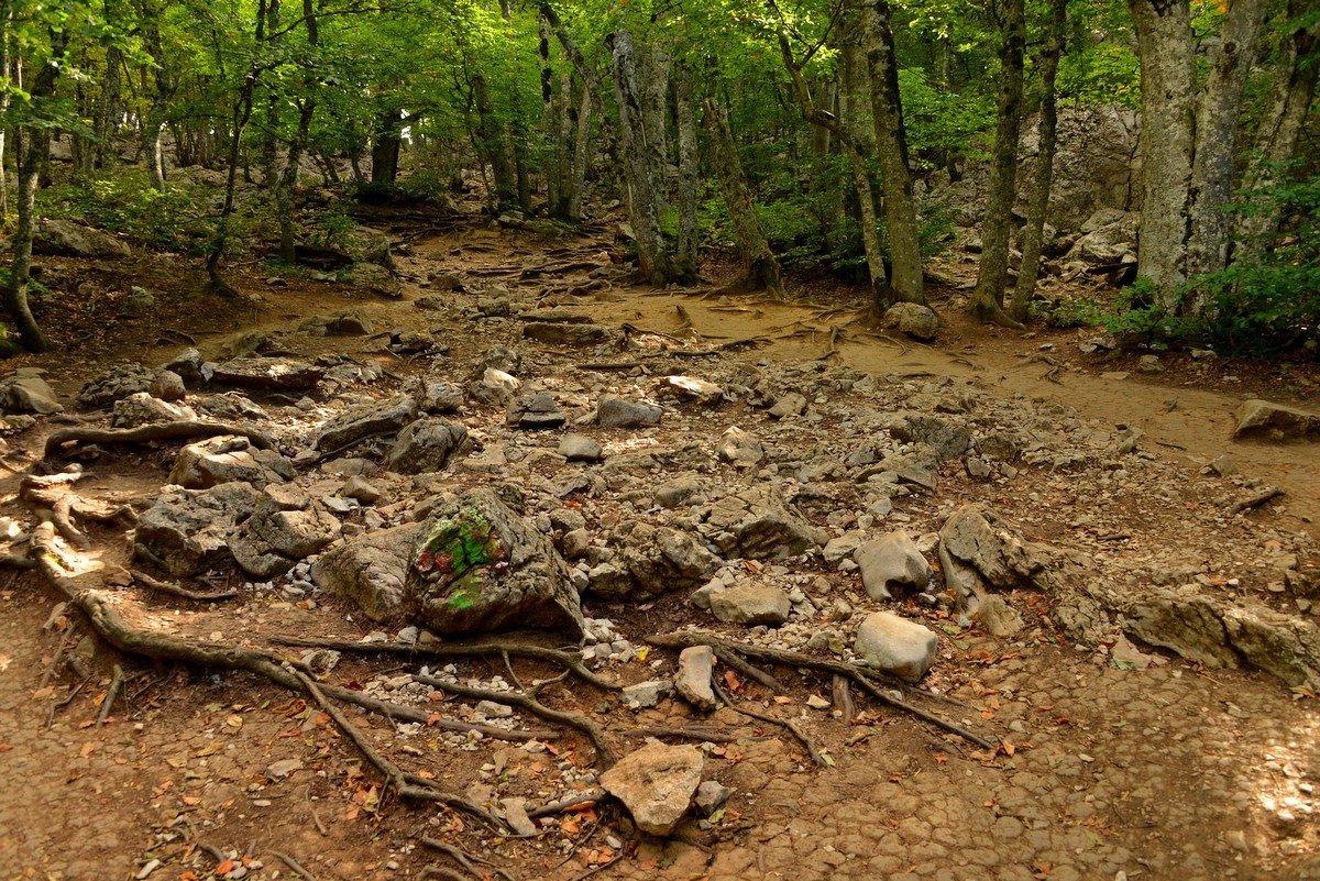 Каменная река - Олег Потехин