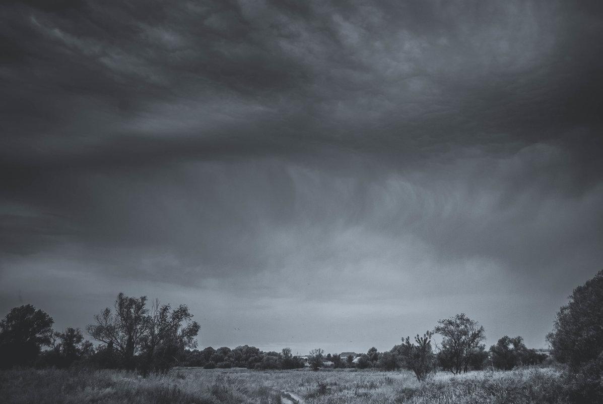 грозовое облако - Алина Гриб