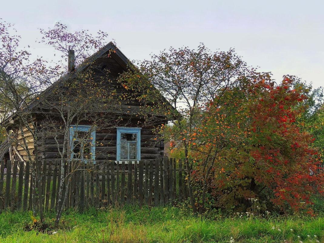 Деревенские мотивы.Осень - Павлова Татьяна Павлова
