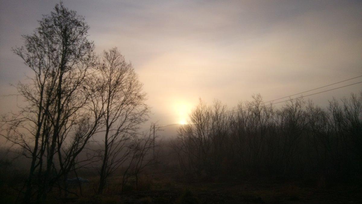 Утро в Заполярье - Ирина Блажи