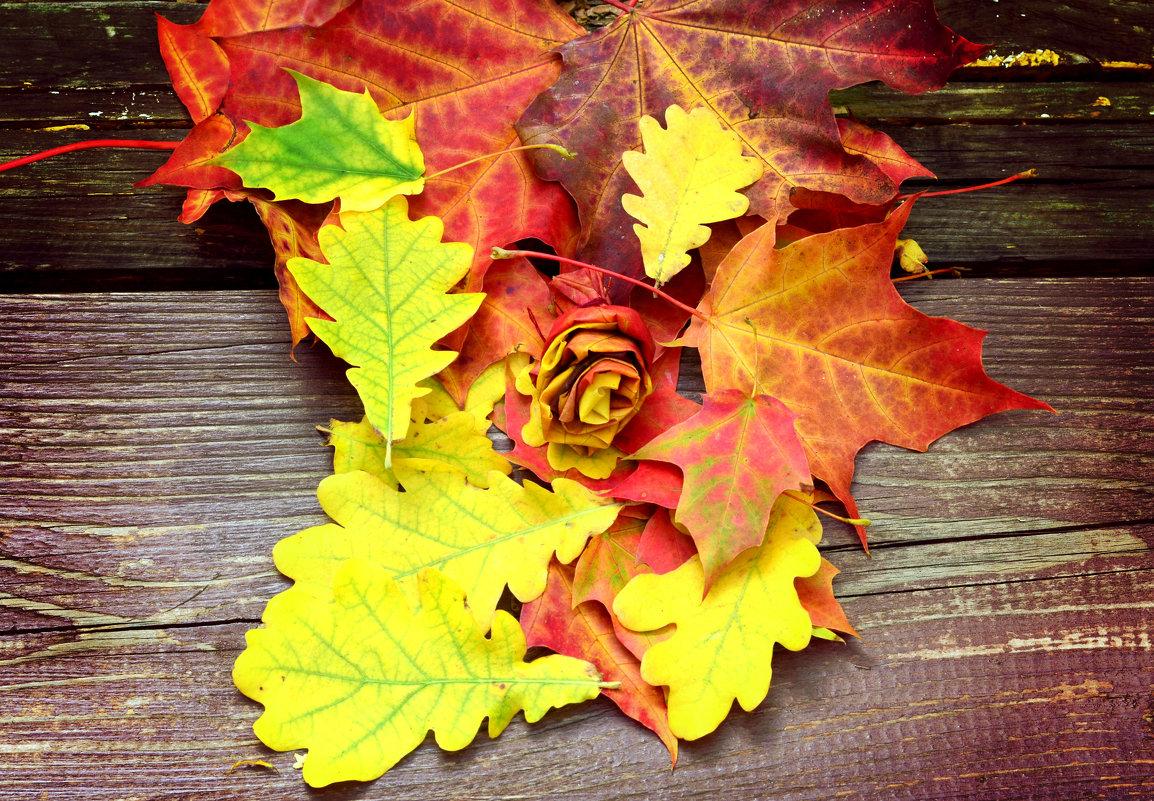 Разноцветные краски осени - Марина Романова