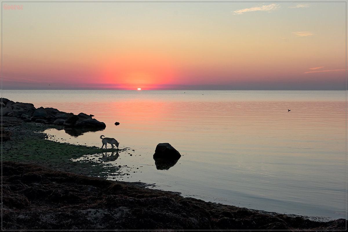 Рассвет на Азовском море в городе Геническ - Александр