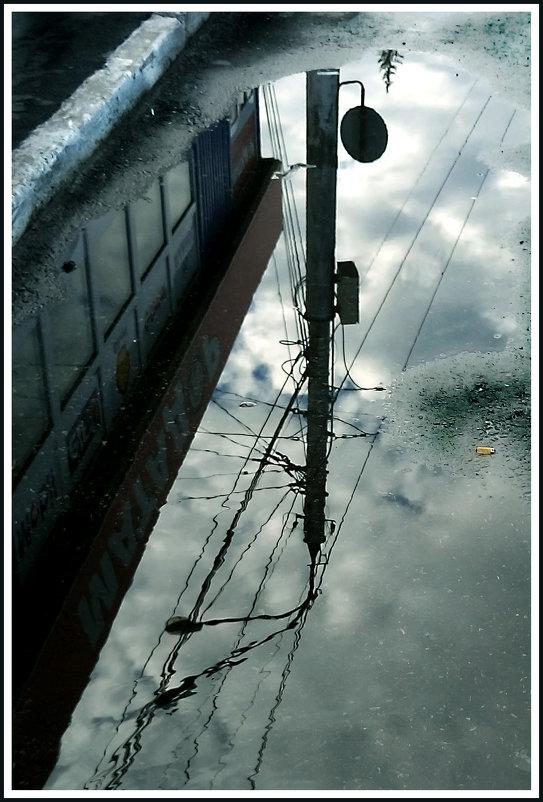 И палое небо с дорог не подобрано,.. после дождя - юрий
