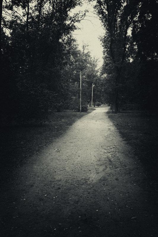 Парковая аллея - Вадим