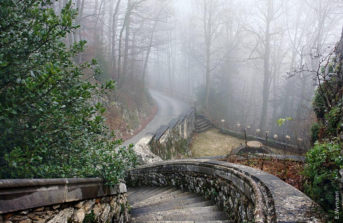 лестница в туман - Elena Wymann