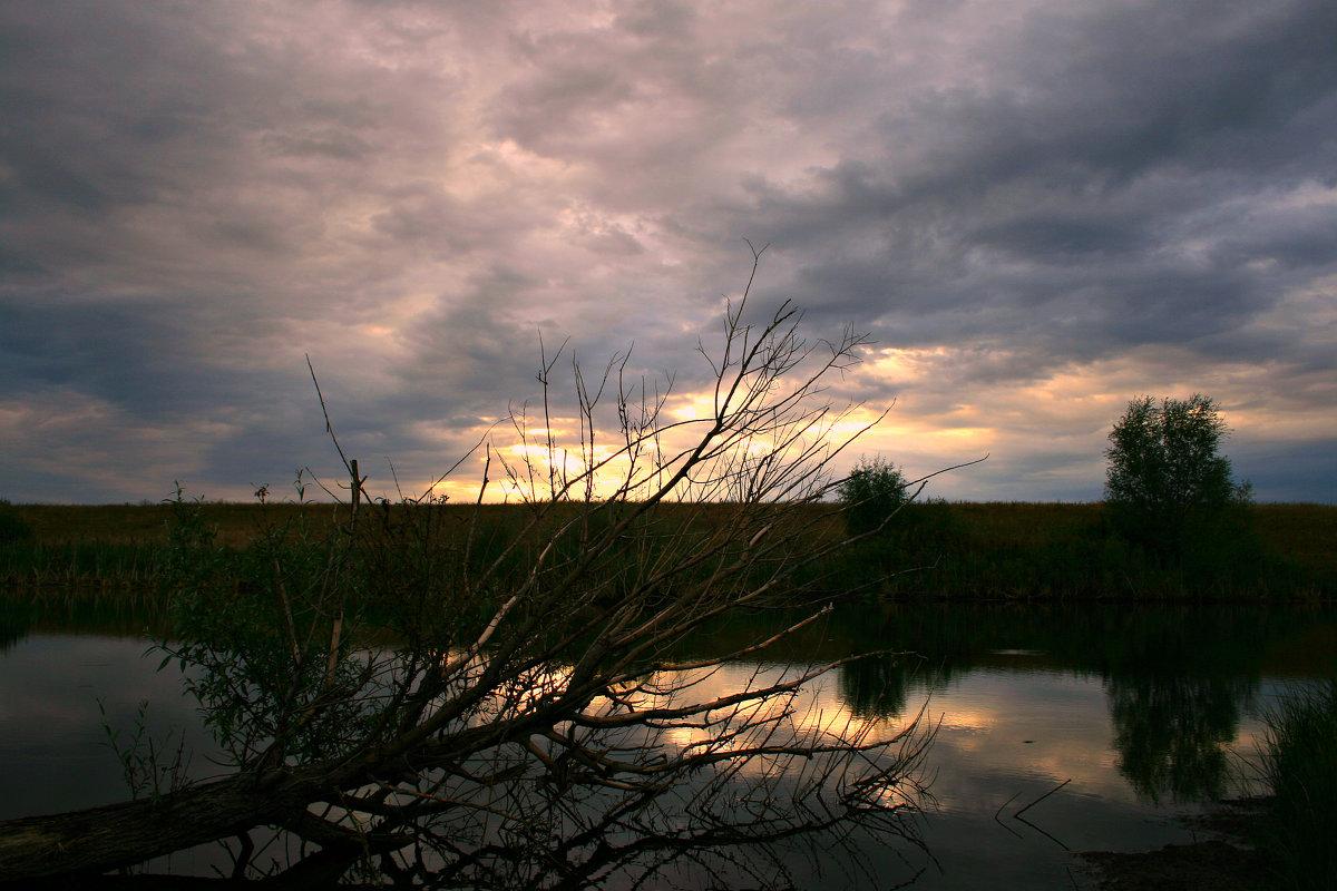 Утром небо было хмурым и казалось всё понурым ... - Евгений Юрков