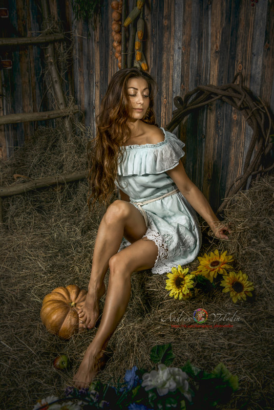 Девушка на сеновале - Андрей Володин