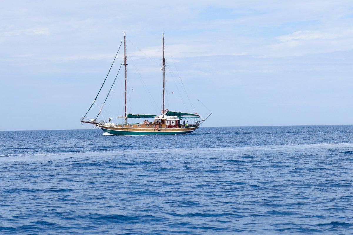 На морской прогулке... - Светлана Игнатьева