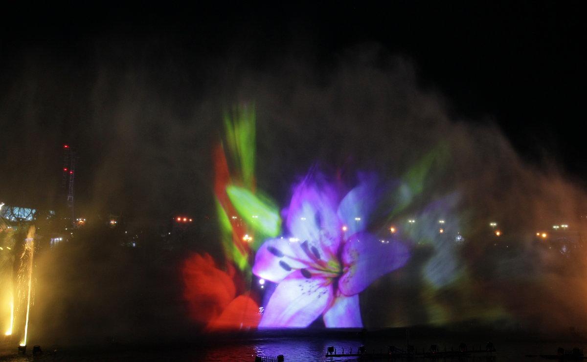 Шоу фонтанов - Виолетта