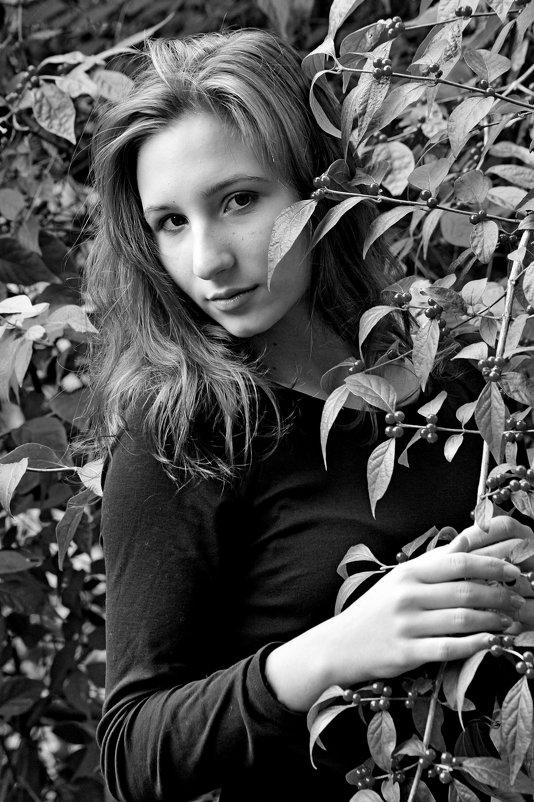 Осень. - Дмитрий Воронин