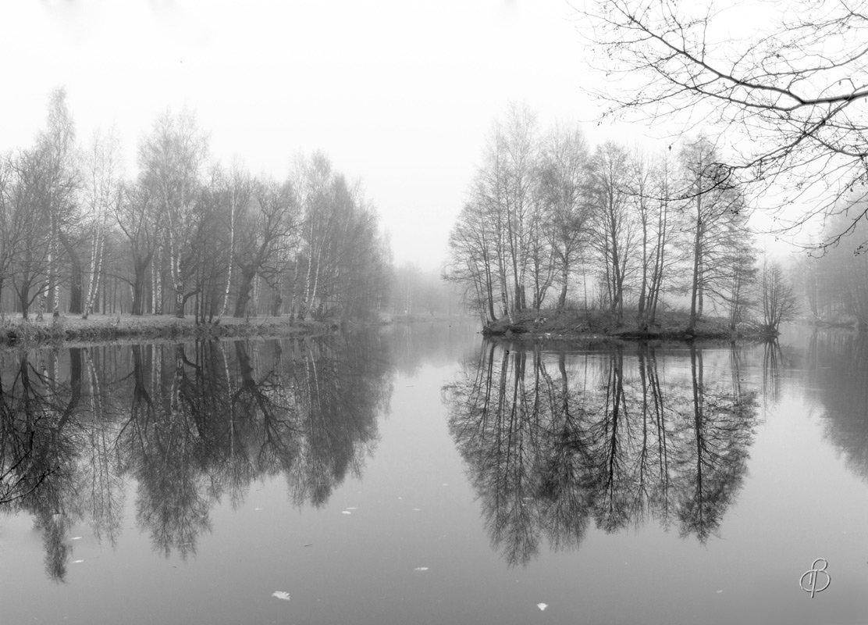 Поздняя  осень - Виталий