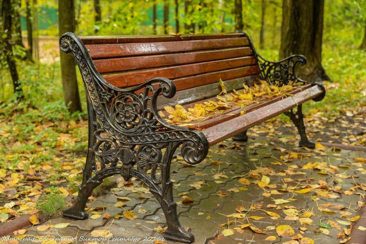 Осенняя скамейка. - Виктор Евстратов