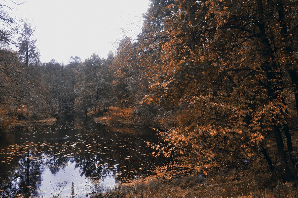 Шува́ловский парк - Валентина Потулова