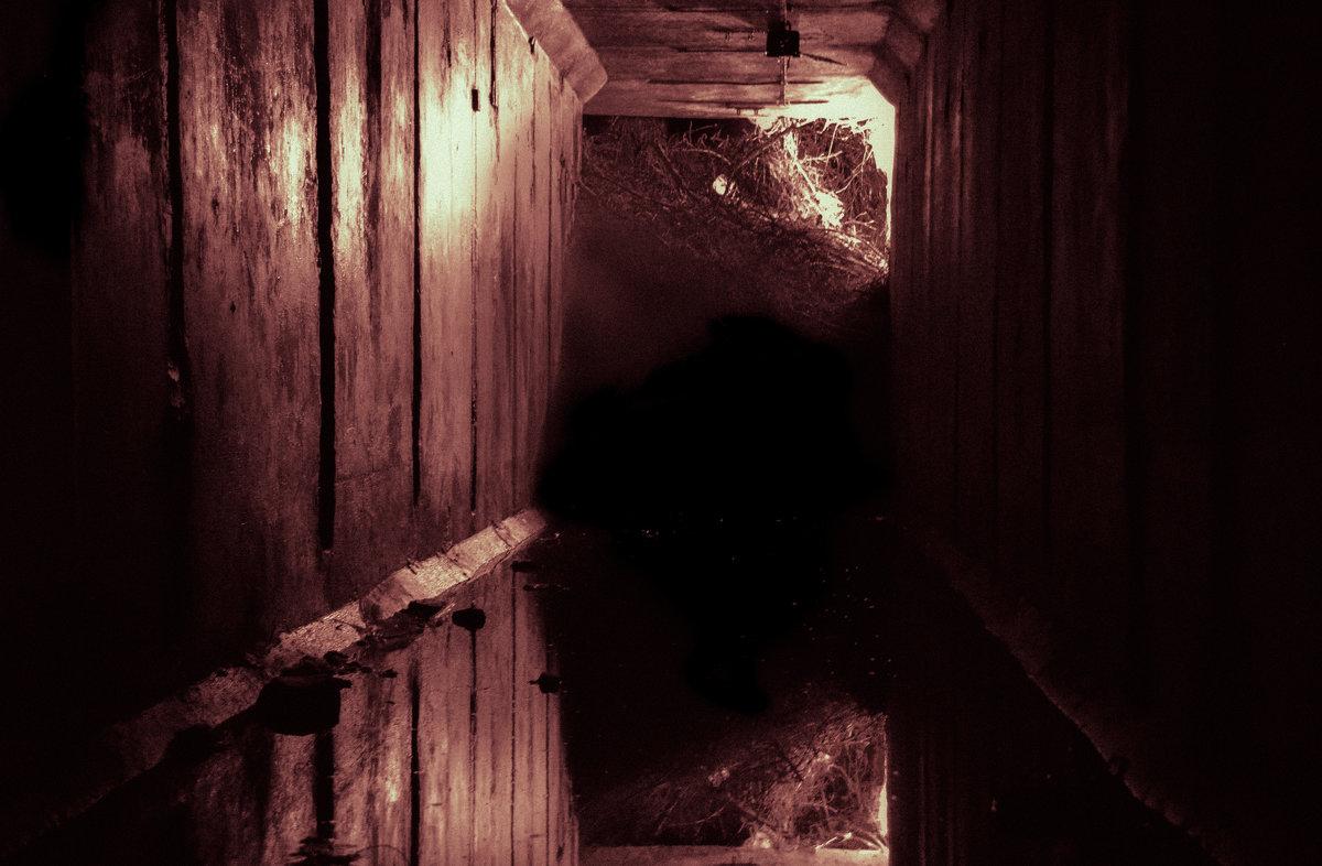В тоннеле - Дмитрий Коноплев