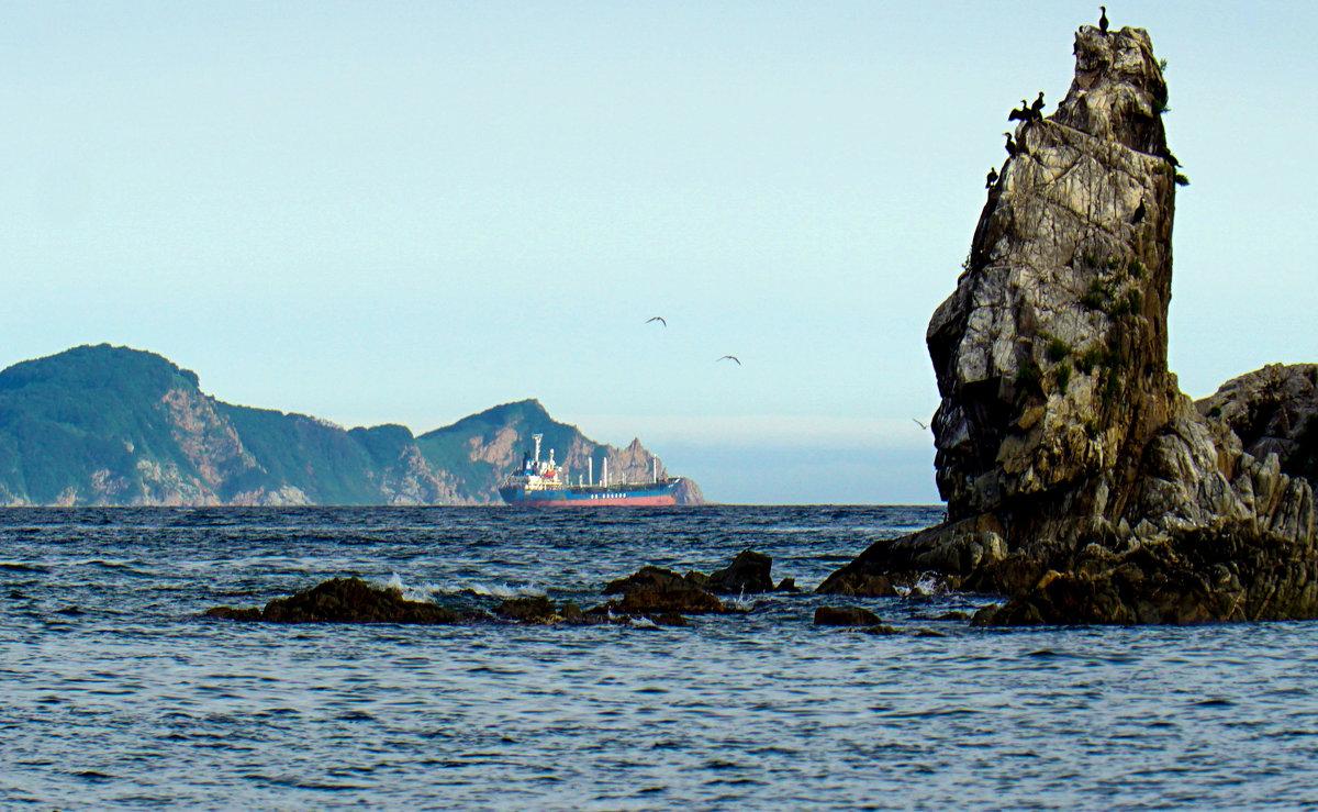 Японское море... - Арина