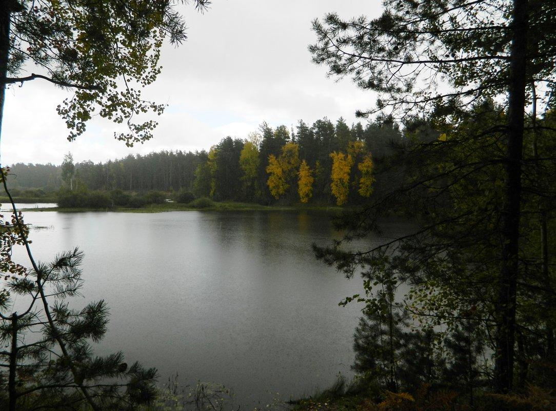 Осень...* - Вячеслав