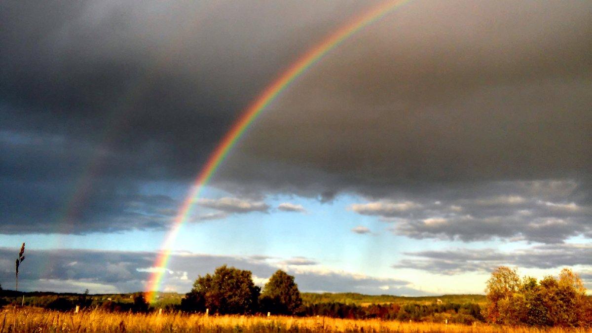 Вечерняя радуга - Елена Байдакова