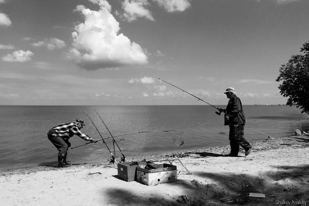 Ловись, рыбка - Анатолий Шулков