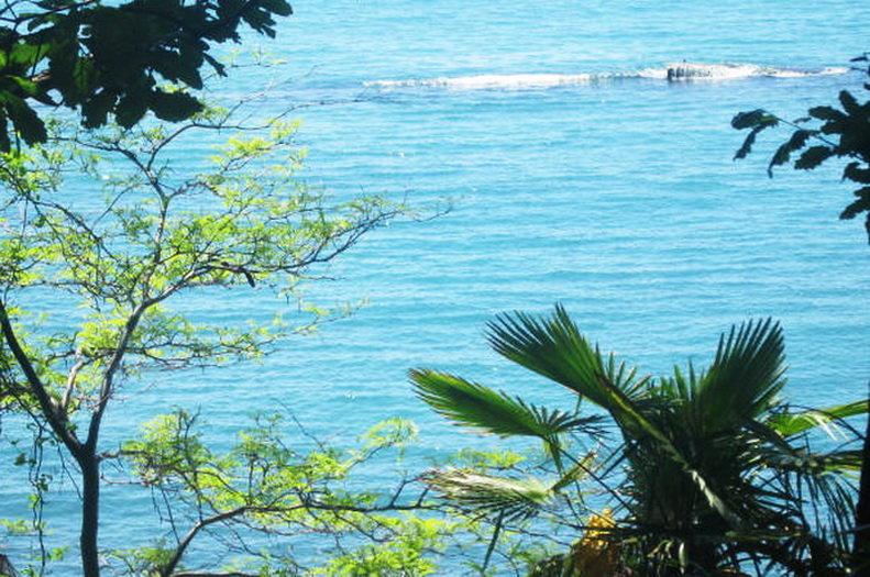 Сочи. Море - татьяна