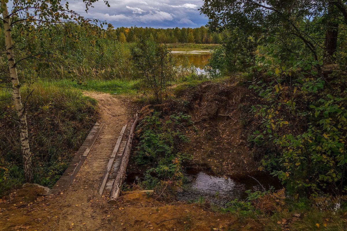 Мост через ручей - Андрей Дворников