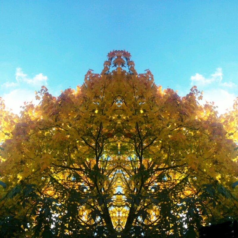 Золотая пагода осени - Виктория Нефедова