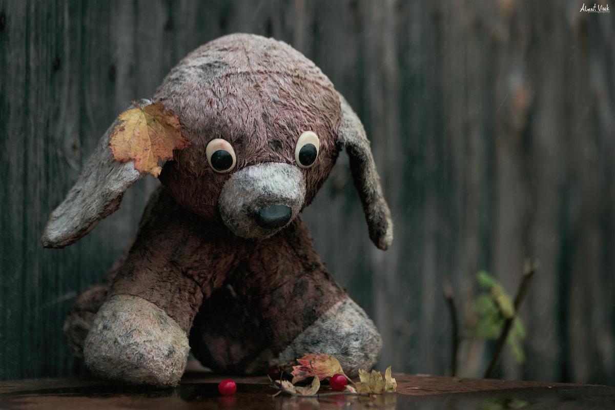 Забытый друг - Alent Vink