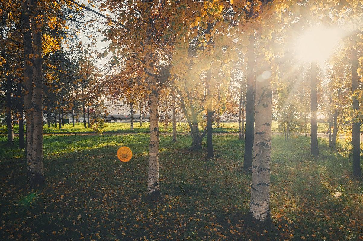 Осень - Александр Горбунов