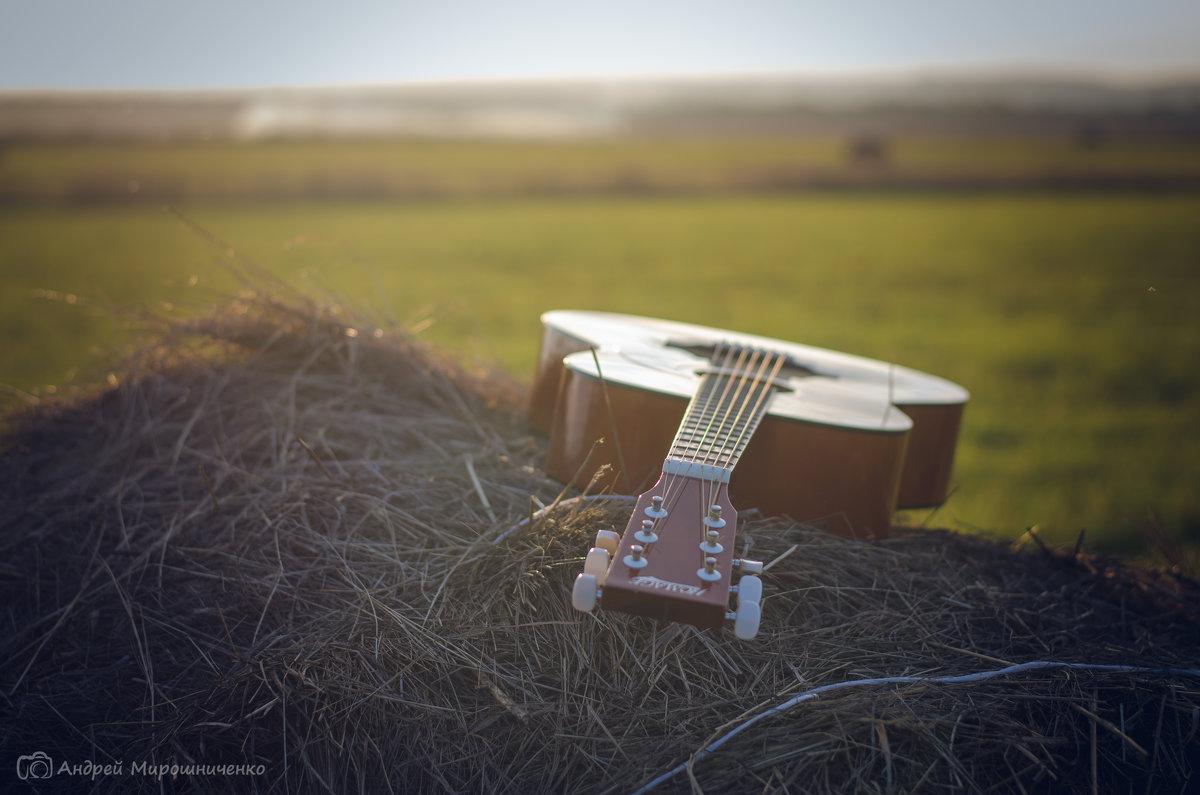 Гитара - Андрей Мирошниченко