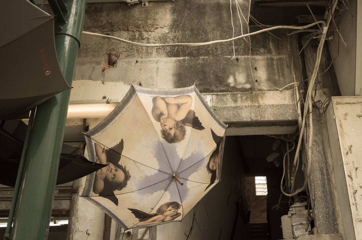 Ангелы сохнут в подворотне - Sofia Rakitskaia