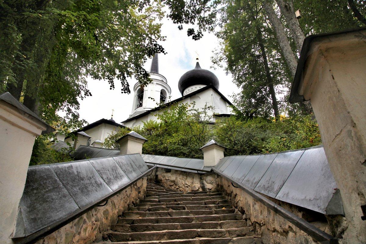 Дорога в храм. Пушгоры - Наталья
