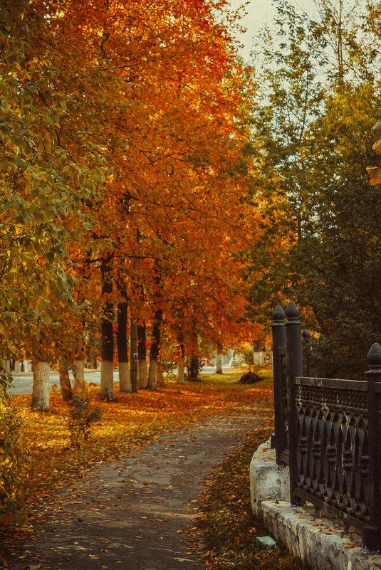 Осенняя пора - Анастасия Лаптева