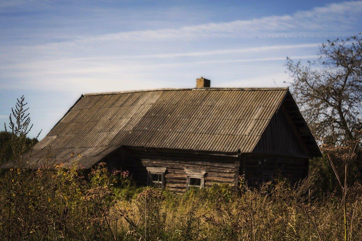 Низкий дом мой давно сутулился.. старый пес мой давно издох - Александр