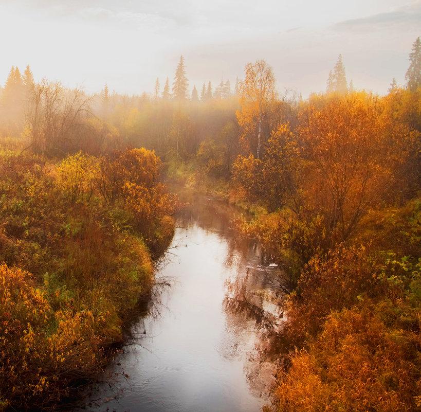 Золотая Осень!Наш Север! - Лариса Сафонова