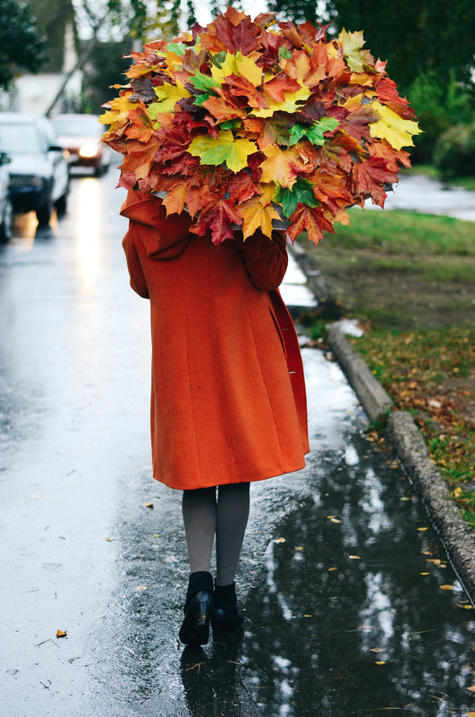 Осень шагает вперед.... - Марина Романова