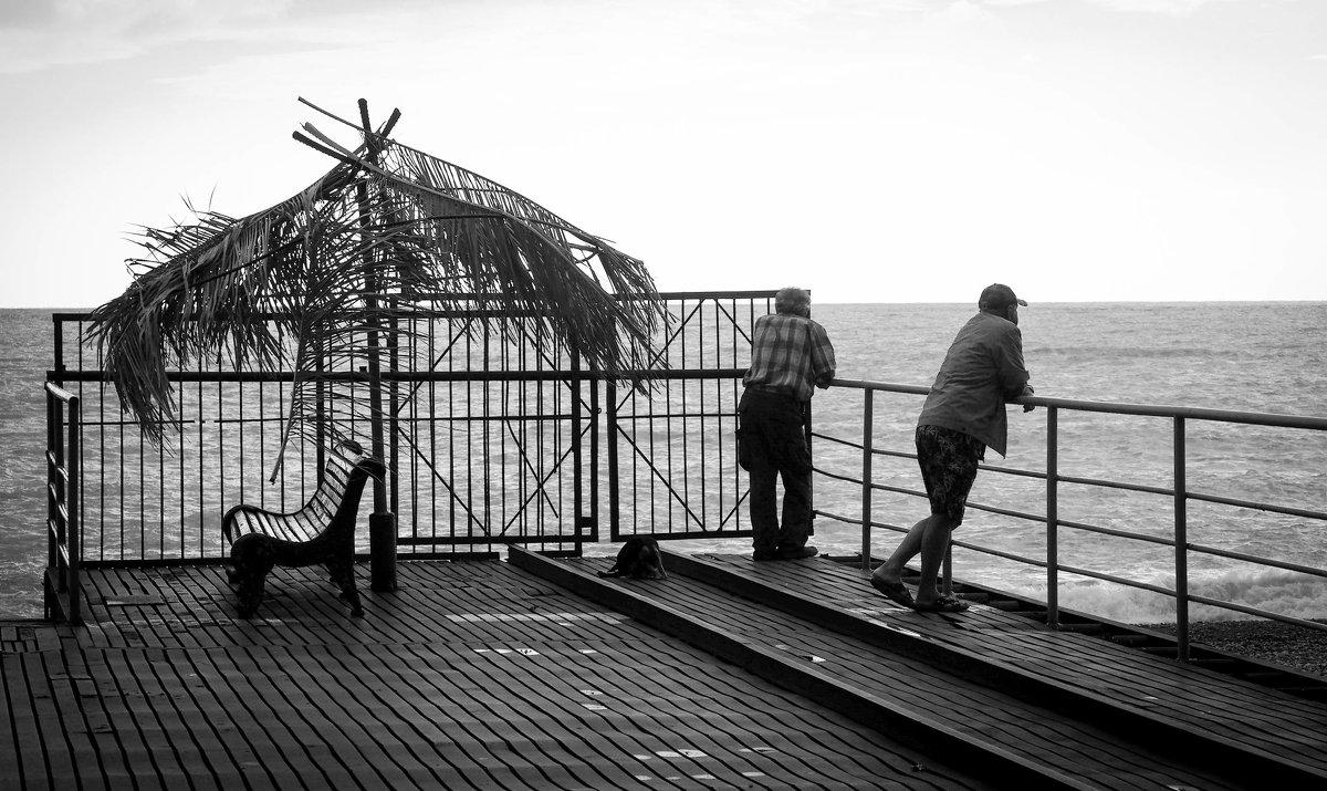 У моря погоды ... - Евгения Кирильченко