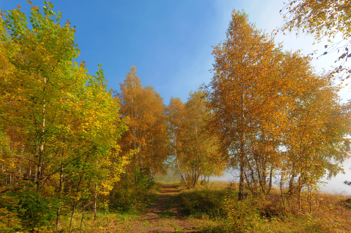 Осенний этюд - Анатолий Иргл